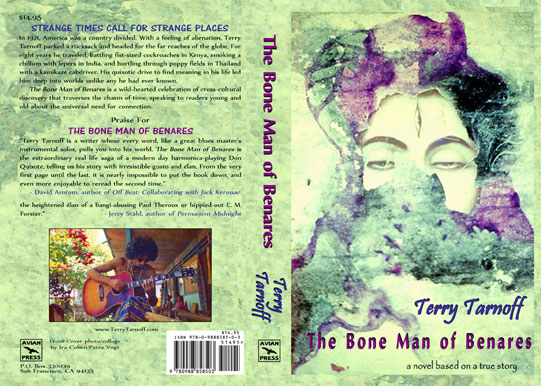 Book Cover Design for Terry Tarnoff